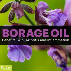 Borage oil - Dr. Axe