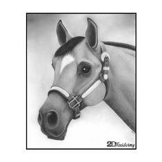 Reno - Hand drawn portrait with graphite pencil