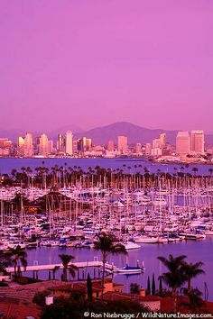 Downtown San Diego Skyline and Shelter Island at sunset from Point Loma, San Diego, California