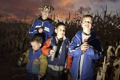 Chatfield Corn Maze - A fun family activity to do this fall!
