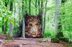 SANGLIERS .....Avec des troncs d arbres