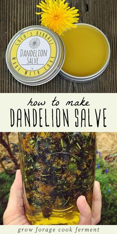 Learn how to make this dandelion salve recipe using foraged dandelions! This homemade herbal salve is especially good for sore muscles, joints, and dry skin. Cold Home Remedies, Natural Health Remedies, Natural Cures, Natural Healing, Herbal Remedies, Natural Treatments, Holistic Healing, Sleep Remedies, Holistic Remedies
