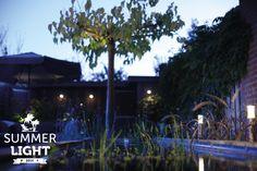 In de reeks SUMMER LIGHT deze sfeervolle tuin met daarin staande lamp LIV die de siergrassen uit licht, wandlamp BLINK aan de schutting en buitenspot SCOPE die de boom uit licht.