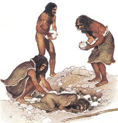 53 Ideas De Historia Evolución Humana Hominidos Historia