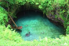 The green plunge Where: Samoa, South Pacific Wild factor: 8 The Tosua Ocean Trench is surrounded by lush green trees and allows swimmers to enjoy beautiful clear water. It's nearly a drop into the pool, located near the sea on the tiny island of Upolu. Best Swimming, Swimming Holes, Dream Vacations, Vacation Spots, Maui Vacation, Family Vacations, Family Travel, The Places Youll Go, Places To See