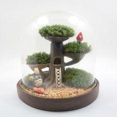 cute Totoro terrarium