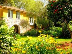 Sintra Vacation Rental - VRBO 3719555ha - 1 BR Sintra Area Apartment in Portugal, Cinco - Perfectly Located Apartment, B&B Style Service, Pr...