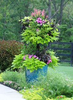 basket-column-2-pamela-crawford.jpg (1000×1369)