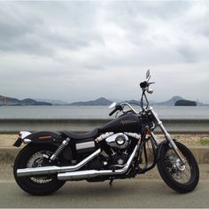 "My Harley ""Street Bob"""