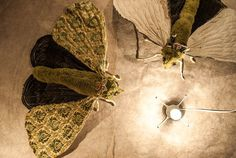 Green moth, softsculptur,Art, insect. Home decor, Textil art, fabric moth, Fibre art, gift idea