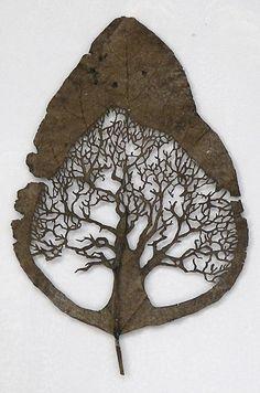 from nature to nature , wood art - lorenzo duran