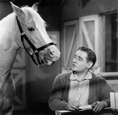 Alan Young, the Affable Owner on 'Mister Ed,' Dies at 96 - The New York Times Talking Horses, Talking Animals, 70s Tv Shows, Old Shows, Film Quiz, Mister Ed, Alan Young, Today In History, Comedy Tv