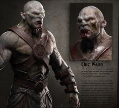 3D Videogame store - Orc Wars