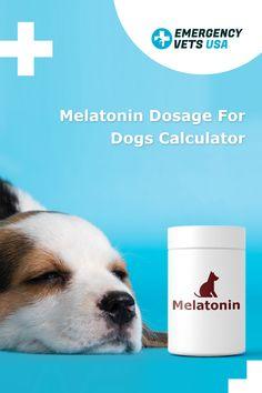 Melatonin For Dogs, Emergency Vet, Calculator, Puppies, Chart, Pets, Health, Animals, Cubs