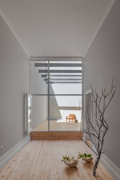 PF Architecture Studio: Santa Teresa — Thisispaper — What we save, saves us.