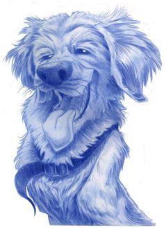 Animal Caricatures No. 21 by SuperStinkWarrior on DeviantArt Cartoon Photo, Cartoon Dog, Dog Charities, Funny Animals, Cute Animals, Caricature Drawing, Cartoon Sketches, Fox Art, Girl And Dog