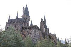 The Phoenix and Hogwarts: Immortal Monday