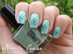 Get creative with light and dark shades in this turquoise hued nail polish. Start off with a light turquoise base color and top it off with darker turquoise Dandelion silhouettes complete with its petals painted flying away with the wind.