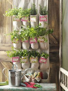 Running out of garden room? This space saving gardening project will have you growing a vertical shoe organizer herb garden in no time!