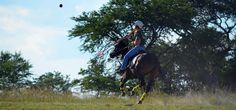 Gathering with all the top Polocrosse players at Antelope Park. A weekend with speed and adrenalin! Riding Helmets, Park, Top, Parks, Crop Tee