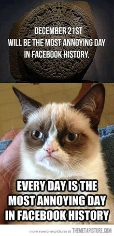 Grumpy Cat on December 21…