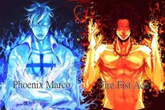 """D: """"Hello for the first time, Oda-sensei. I was thinking, I don't quite understand how """"Phoenix Marco""""'s Zoan fruit of the """"legendary beast"""" kind is Anime & Manga Ace One Piece, One Piece Ship, 1920x1200 Wallpaper, Full Hd Wallpaper, Dragon Ball, Black Butler Undertaker, Kawaii Potato, Phoenix Art, One Piece Images"""