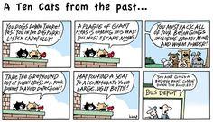 Ten Cats Comic Strip, April 26, 2015 on GoComics.com