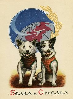 Belka and Strelka Space dogs postcard space race unused collectible postcard, space exploration animals Belka And Strelka, Animal Facts For Kids, Arte Sci Fi, Socialist Realism, Soviet Art, Soviet Union, Space Race, My Sun And Stars, Illustrations
