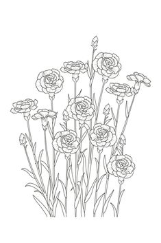 Carnations - Minimal Floral Line Art Mini Art Print by Wheimay - Without Stand - x Carnation Drawing, Carnation Flower Tattoo, Carnation Colors, Silk Painting, Painting & Drawing, Flower Outline Tattoo, Line Art Flowers, Mini Carnations, Line Art Tattoos