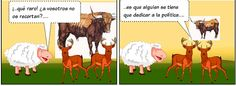 20120621170431-animales-7.jpg
