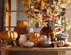 A bountiful autumnal display