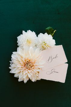 Calligraphy name cards on handmade paper, with deckled edges by PAPIRA / / © PAPIRA Wedding Stationery // PAPIRA invitatii de nunta personalizate si sigilii de ceara Less Letterpress Wedding Invitations, Wedding Invitation Suite, Wedding Stationery, Wedding Shoot, Our Wedding, Calligraphy Name, Name Cards, Wedding Paper, Dried Flowers