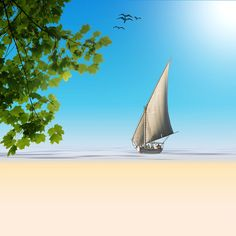 Sailing Boat, Plant, Water, Sea, Sand, Beach, Holiday