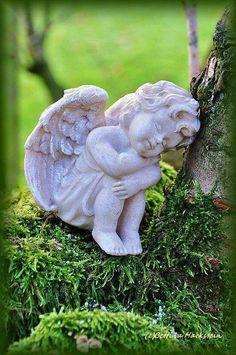 Angelo Statue (25)Sweet