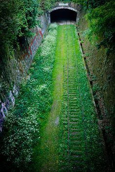 "Before the Paris Métro, there was the 'Chemin de fer de Petite Ceinture' or ""little belt railway"". Its steam engined trains run around the French capital, on tracks built between the city's forts, encircling 19th century Paris.  The railway fell into decline from the 1930's  and by 1985 all parts of the 30km (19 miles) line were shut down. The ancient walls through which the trains were running kept the Petite Ceinture isolated and allowed nature to reclaim the space. Recently, a"