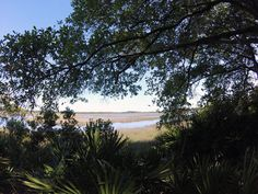 With it's rich history and variety of activities among the Florida landscape, the Talbot Island State Park offers a perfect escape to the busy city life. #JacksonvilleFL