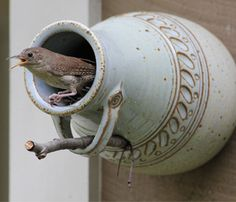Bird Bottle by Claudia Karimi