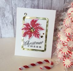 Image result for PTI PAINTED POINSETTIA