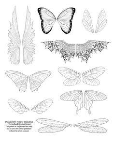 Resources: Wings Drawings