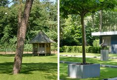 Minimalistische tuin bij woning en kantoor buytengewoon
