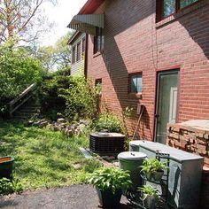 BEFORE: Overgrown Side Yard