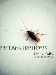 Franz Kafka - Metamorphosis