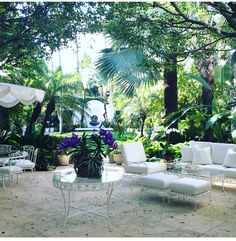 Lauder family patio Palm Beach