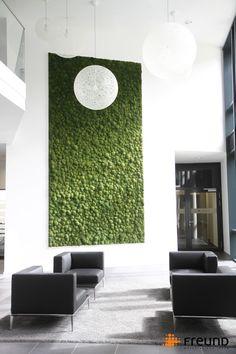 Freund GmbH | Greenhill Polstermoos Moosbild Mooswand