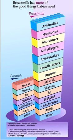Lego Stack, Breastmilk Composition vs formula - great graphics with lots of info! Empower moms with the evidence based info and they will have all the accurate info they need to make an informed choice! Breastfeeding Books, Breastfeeding Benefits, Breastfeeding Accessories, Breastfeeding Support, Breastfeeding And Pumping, Breastfeeding Nutrition, Lactation Consultant, Baby Feeding, Breast Feeding