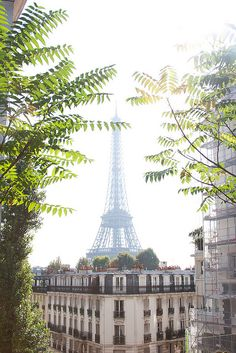 With tree branches in front of it (one more great #Paris photo from @CobbleStay)