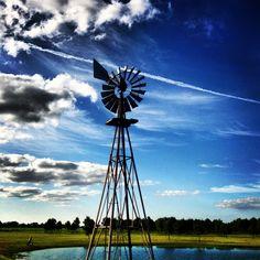 Windmill at the farm against a blue Texas sky.
