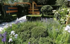 Chelsea Flower Show 2014 | the Extending Space garden designed by Daniel Auderset and Nicole Fischer
