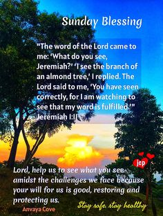 Sunday Love, Sunday Morning, September Quotes, Jeremiah 1, Morning Greetings Quotes, Morning Blessings, What Do You See, Daily Devotional, Blessed