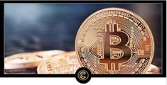 Anybody who has been online this past year would have seen all the hype and drama over cryptocurrency. Everybody seems to be involved in it… and yet, there ar Get Rich Quick, How To Get Rich, Cryptocurrency Trading, Bitcoin Cryptocurrency, Make Money Online, How To Make Money, Seed Money, Social Proof, Hard Truth